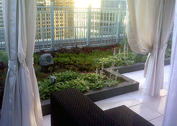 Green Roofs & Roof Gardens